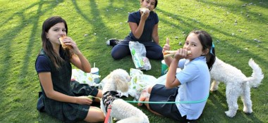 How The Girls & I Celebrated National Picnic Day (With Subway)