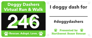 doggy_dashers_bib_front_and_back_v2