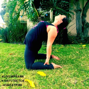 liveinprana #sweatpink yoga backbend