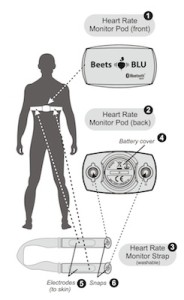 Beets Blu heart rate monitor diagram