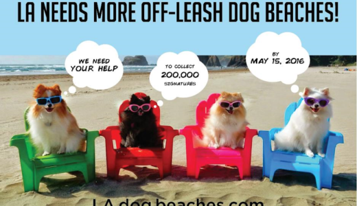LA Needs a Dog Beach; A Press Release from LAdogbeaches.com