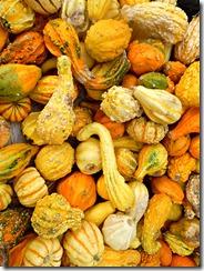 gourds las vegas stu millers