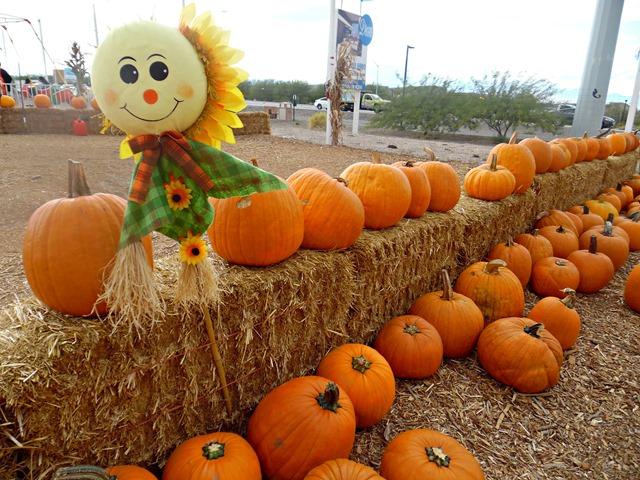 pumpkin patch las vegas 2020