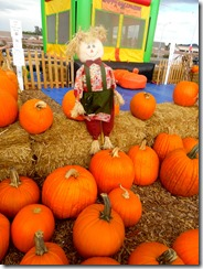 pumpkin patch henderson 2