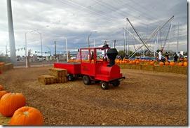 pumpkin patch henderson train