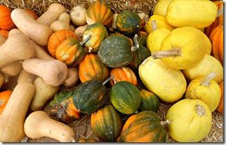 pumpkin stu millers las vegas