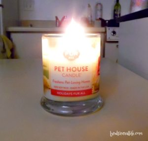 one-fur-all-pet-candle