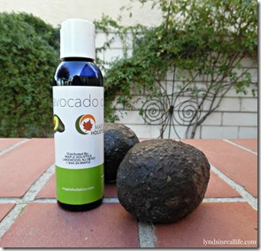 avocado oil maple holistics blog 2