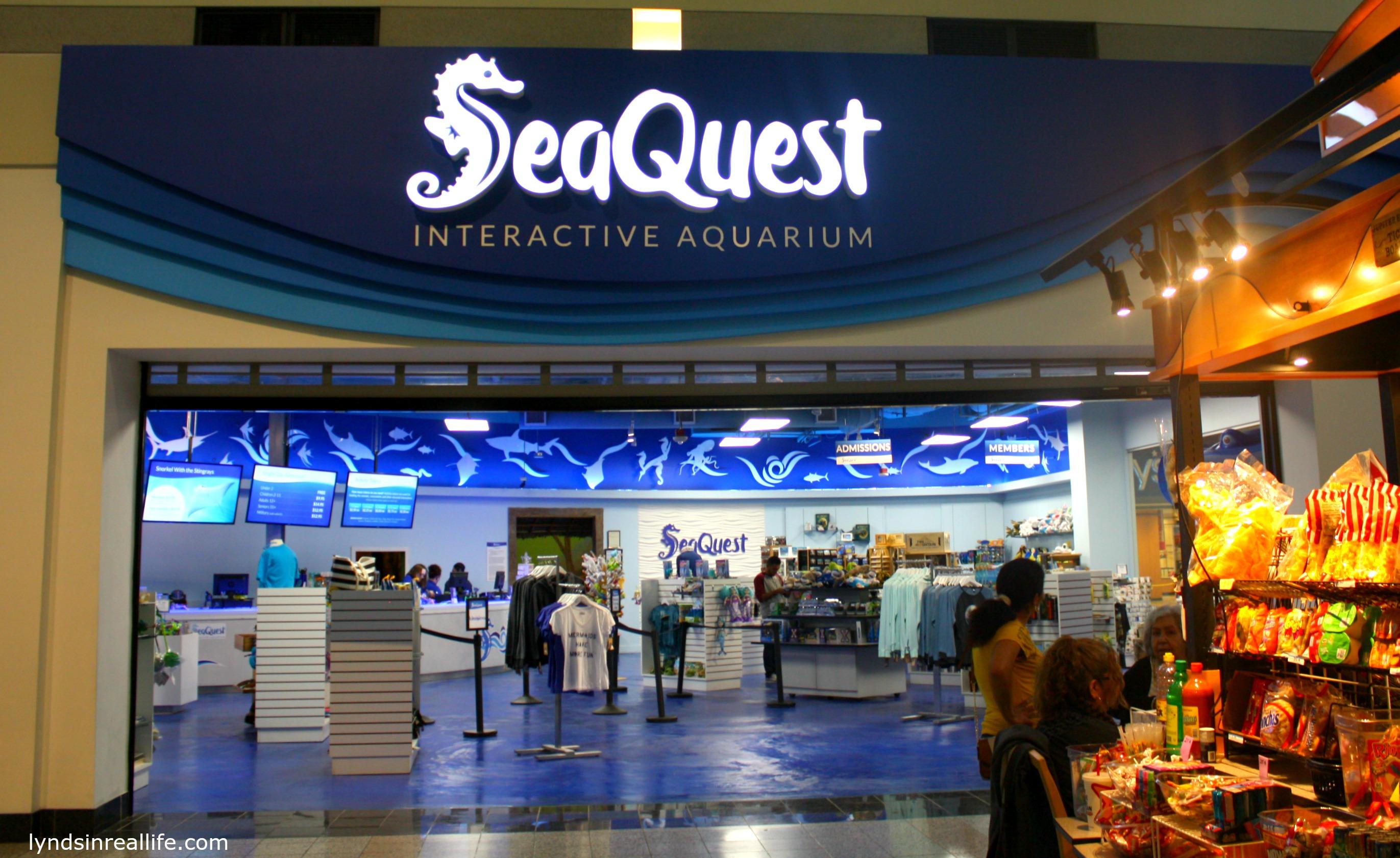 Image result for seaquest aquarium las vegas