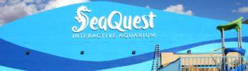 SeaQuest Interactive Aquarium, A New Kids Attraction, Comes to Las Vegas + GIVEAWAY