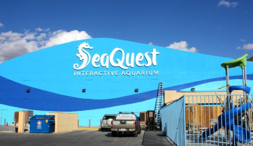 SeaQuest Interactive Aquarium, A New Kids Attraction, Comes to Las Vegas + GIVEAWAY